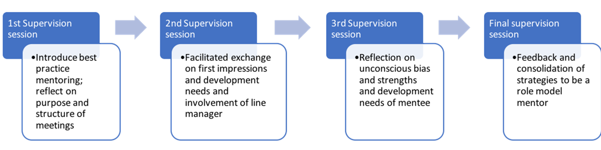 Examples of best practice mentor supervision