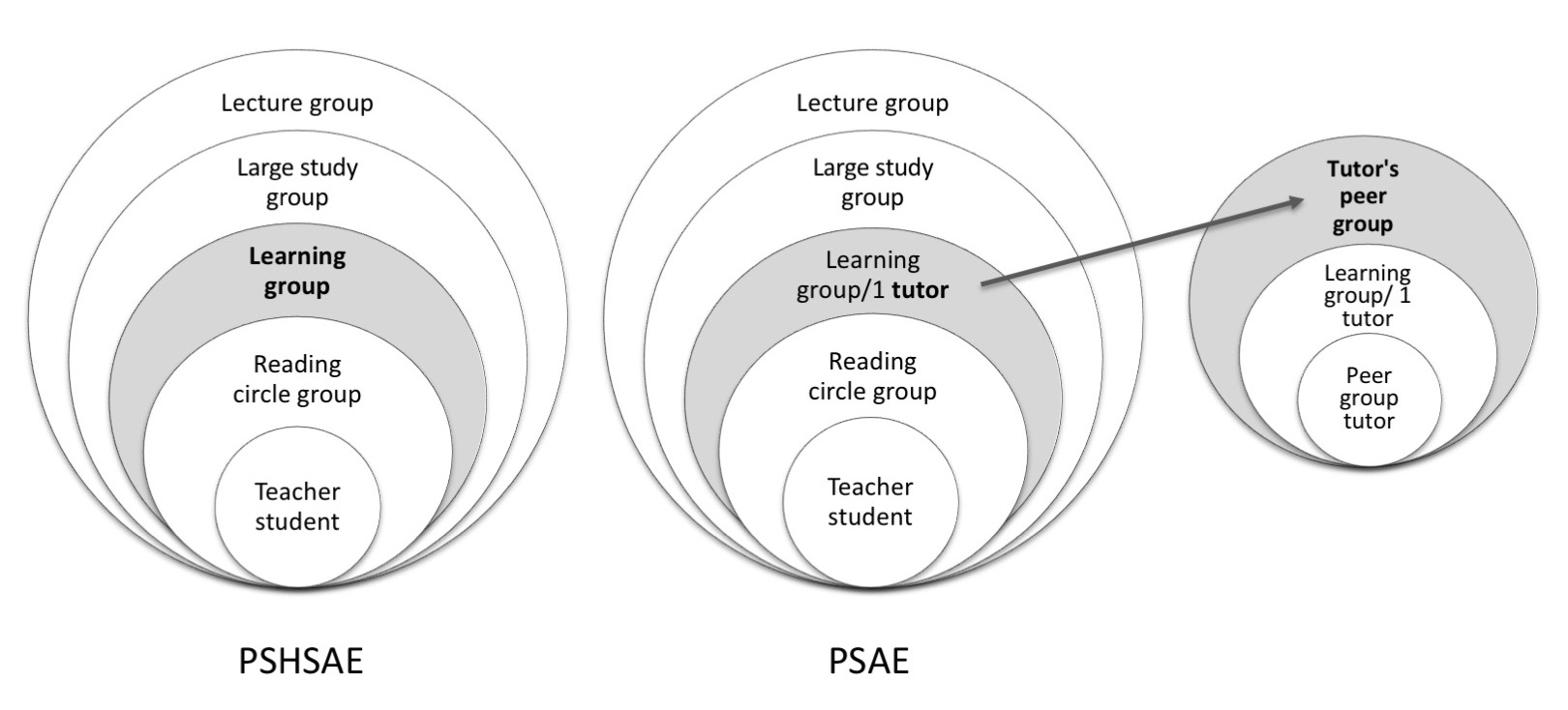 The roles of students' and tutors' self-positions within the two peer group contexts in higher education
